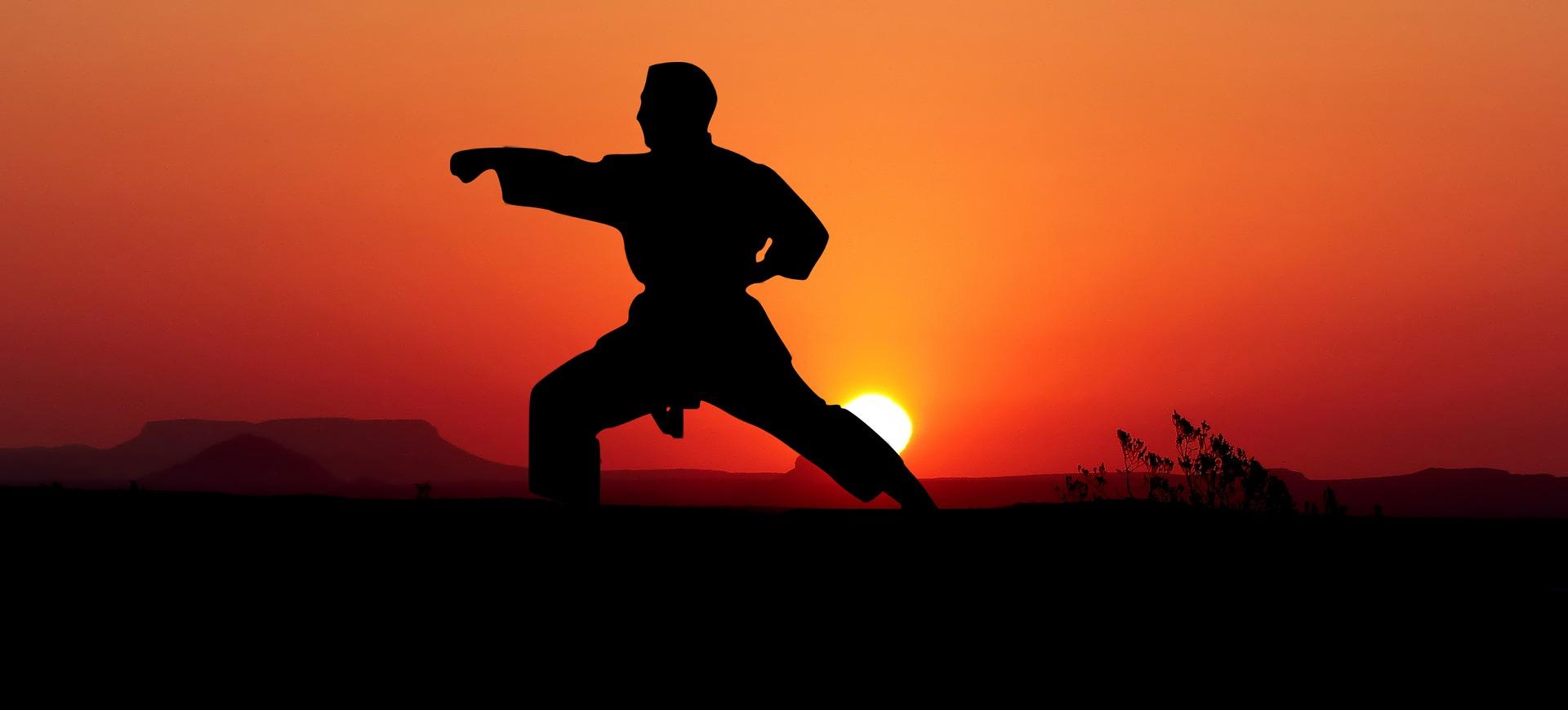 Welcher Kampfsport?