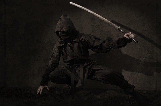 Die Kampfkunst der Ninja