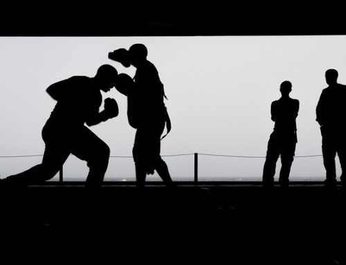 Kämpfen lernen – Trainingsaufbau – Aliveness nach Matt Thornton