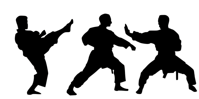 Kampfsport Training zu Hause