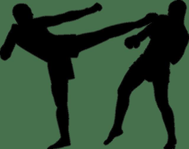 Unterschiede zwischen Boxen, Kickboxen und Muay Thai