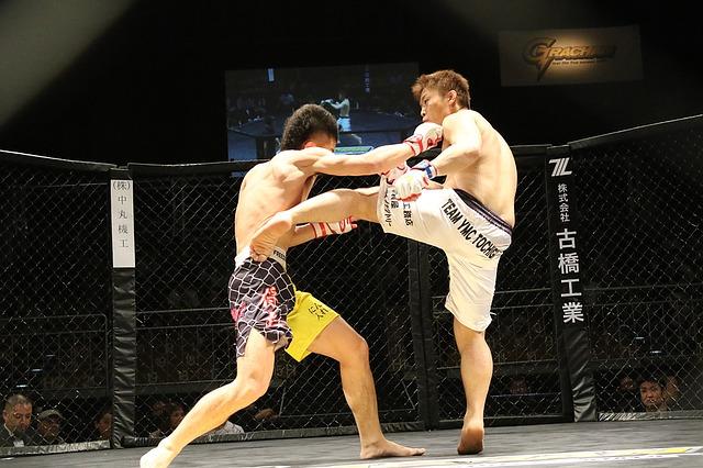 Welche Kampfsportarten für MMA
